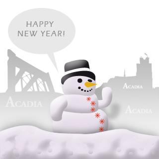 Een gelukkig 2013 gewenst!